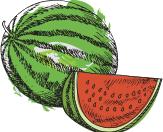 watermelon-logo
